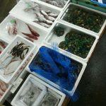 浜名湖で釣り……ができなかったので鮮魚店を見てきた