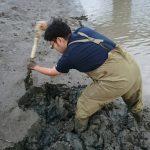 潮干狩りに行ってワラスボ(活魚)を採るのが楽しすぎた