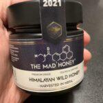 ツツジの蜜で中毒してラリった話①:中毒症状