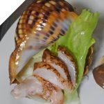 関東近海で一番美しい殻(?)のヤツシロガイも身のお味は凡庸