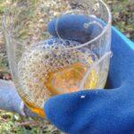 この世のどこかにあるという「酒の湧く竹林」を探しに行ってみた①:竹の中の酒を飲んでみたい!!(動画あり)