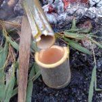 この世のどこかにあるという「酒の湧く竹林」を探しに行ってみた②:竹酒が採れなければ自分で造ればいいじゃない(動画あり)