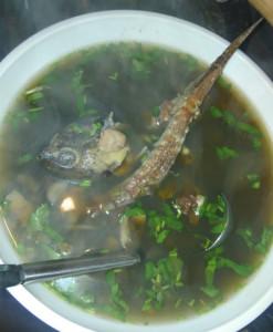 そしてカミツキスープ。これを冷やして固めたら中華街で買える「亀ゼリー」になりそう 味は抜群に良いです