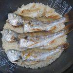 釣りイシモチの刺身は白身界屈指の美味、そして炊き込みご飯も