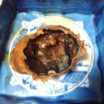 ヒラツメガニのケジャンはめっちゃ美味い