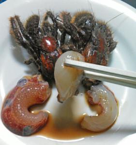 オニヤドカリ,刺身,水,甘い
