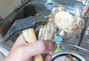 ミネフジツボ,料理,刺身