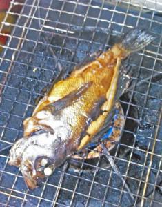 メバル,煮つけ,焼く