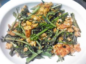 チャンチン,香椿,新芽,料理