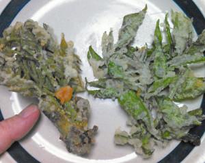 タラノキ,カラスザンショウ,天ぷら