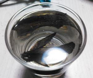 ツバメウオ,ヒレ酒