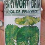 「飲む止血剤」ペニーワートジュースを日本のチドメグサで自作してみた