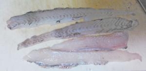 カレイ目の魚は代表的白身