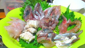 刺身,6点盛り,片瀬漁港